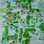 熱田神宮の境内案内図は?社殿やお守りの販売場所などを紹介