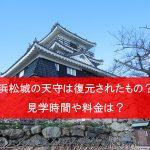 浜松城の天守閣は復元されたもの?内部見学に必要な時間や料金は?