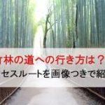 嵐電嵐山駅(京福嵐山駅)から竹林の道の徒歩での行き方は?画像で解説