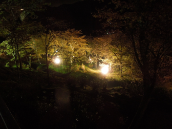 七曲がりの夜間ライトアップ