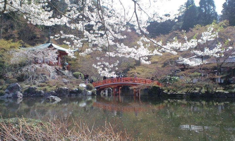 京都のお寺と神社の特別公開情報2017年春まとめ!東寺・醍醐寺など
