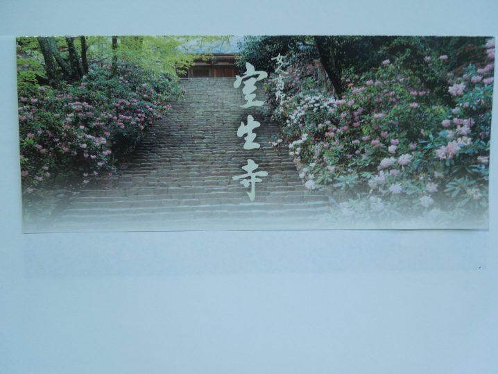 室生寺の石楠花(シャクナゲ)