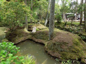 東門近くの島(春日大社萬葉植物園)