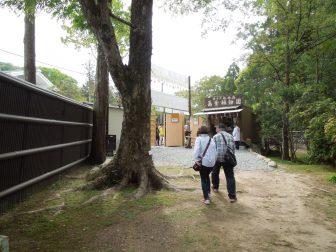 春日大社萬葉植物園の東門(駐車場の前)