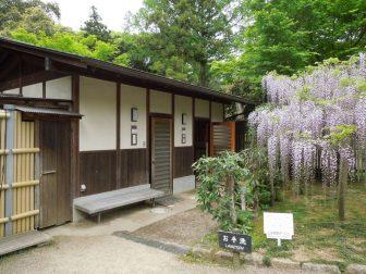 春日大社萬葉植物園のトイレ(お手洗い)