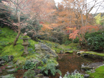 臥龍の庭(瑠璃の庭)