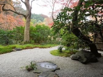 瑠璃光院の庭園