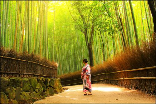 嵐山の竹林の道f02アイキャッチ画像