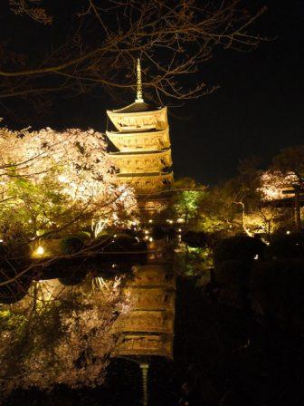 東寺の瓢箪池に映る五重塔