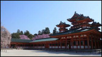 平安神宮白虎楼の桜
