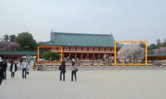 平安神宮大極殿の右近の橘と左近の桜