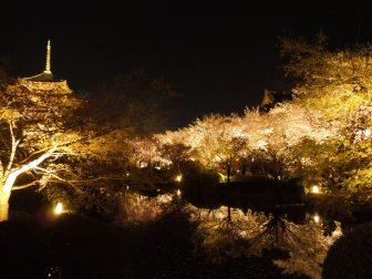 東寺の瓢箪池