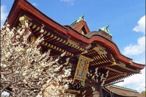 北野天満宮の三光門と梅のアイキャッチ画像