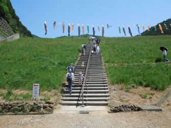 高台に続く階段(白井大町藤公園)