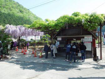 入園受付・藤公園出入口(白井大町藤公園)