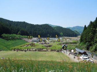 白井大町藤公園の園内の全景