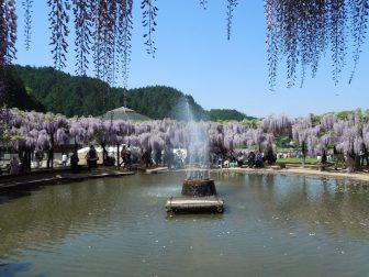 噴水(白井大町藤公園)