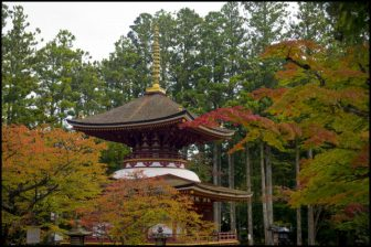 高野山東塔の紅葉
