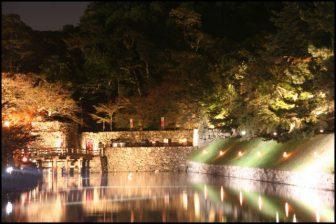 彦根城ライトアップ