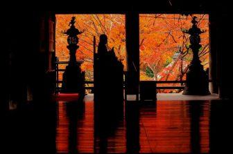 奈良・長谷寺の紅葉