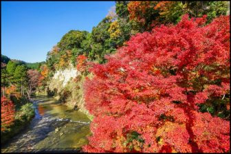 養老渓谷懸崖境の紅葉