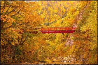 定山渓二見橋の紅葉