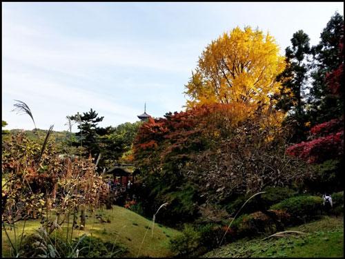 三渓園の紅葉のアイキャッチ画像
