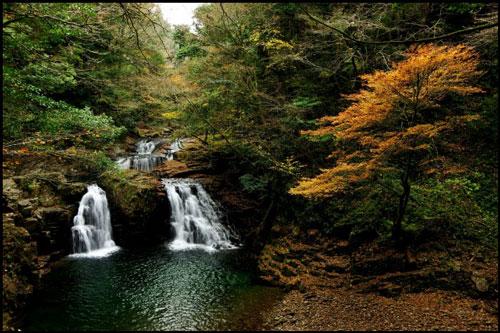 赤目四十八滝の紅葉のアイキャッチ画像