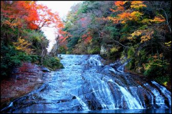 養老渓谷粟又の滝の紅葉