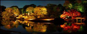 六義園の紅葉ライトアップ