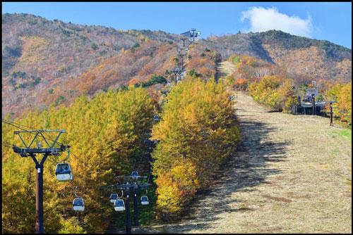 安達太良山の紅葉のアイキャッチ画像