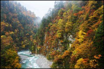 黒部峡谷黒部川の紅葉