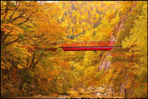 定山渓二見橋のアイキャッチ画像