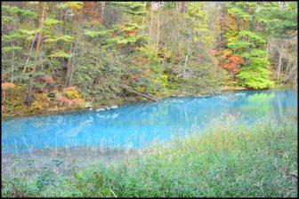 五色沼湖沼群の紅葉