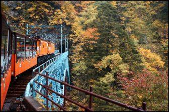 黒部峡谷トロッコの紅葉