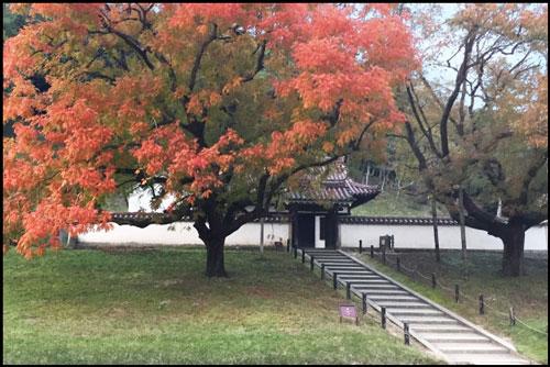 閑谷学校の紅葉のアイキャッチ画像