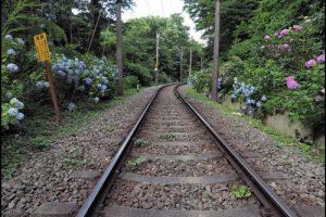 あじさい(箱根登山鉄道)アイキャッチ画像