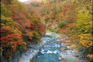 秋山郷の紅葉のアイキャッチ画像