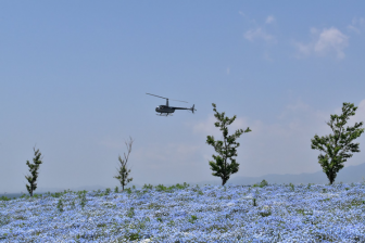 舞洲シーサイドパークのヘリコプター遊覧