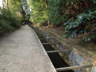 南禅寺の境内へ向かう道