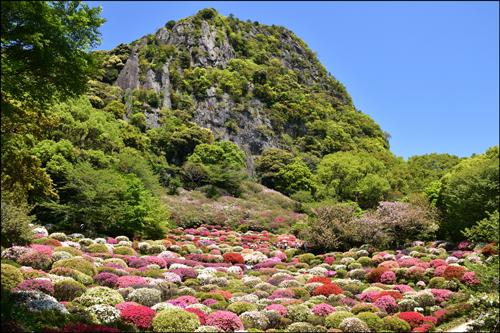 御船山楽園のつつじアイキャッチ画像
