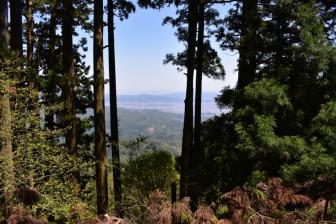 愛宕山山上の愛宕神社からの眺め